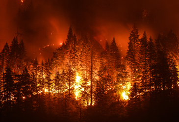 Covid-19 complicates an already difficult wildfire season